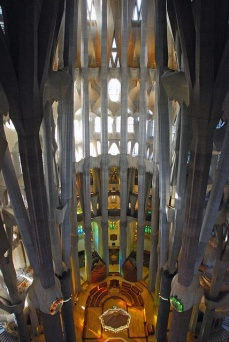 Tree-like- Sagrada Familia